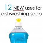 12 Surprising Uses of Dish Soap
