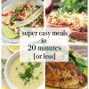 Super Easy Meals in 20 Minutes or Less
