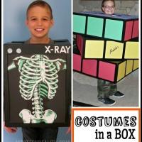 Halloween Costume Cardboard Box