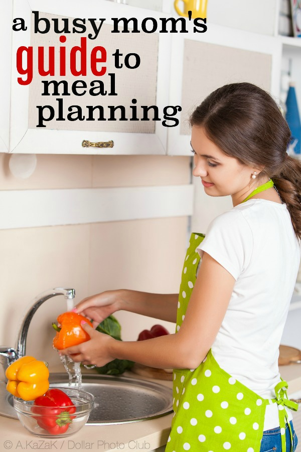 Busy Mom Guide to Meal Planning