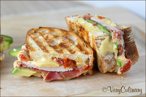Leftover Turkey And Swiss Panini Recipe — Dishmaps