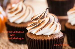 Pumpkin-Cupcakes-wm-3345-300x199