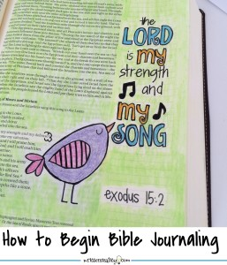 Bible Journaling Beginners Version