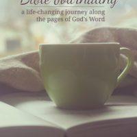 Bible Journaling Book