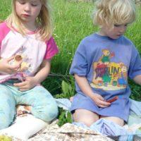 picnic items