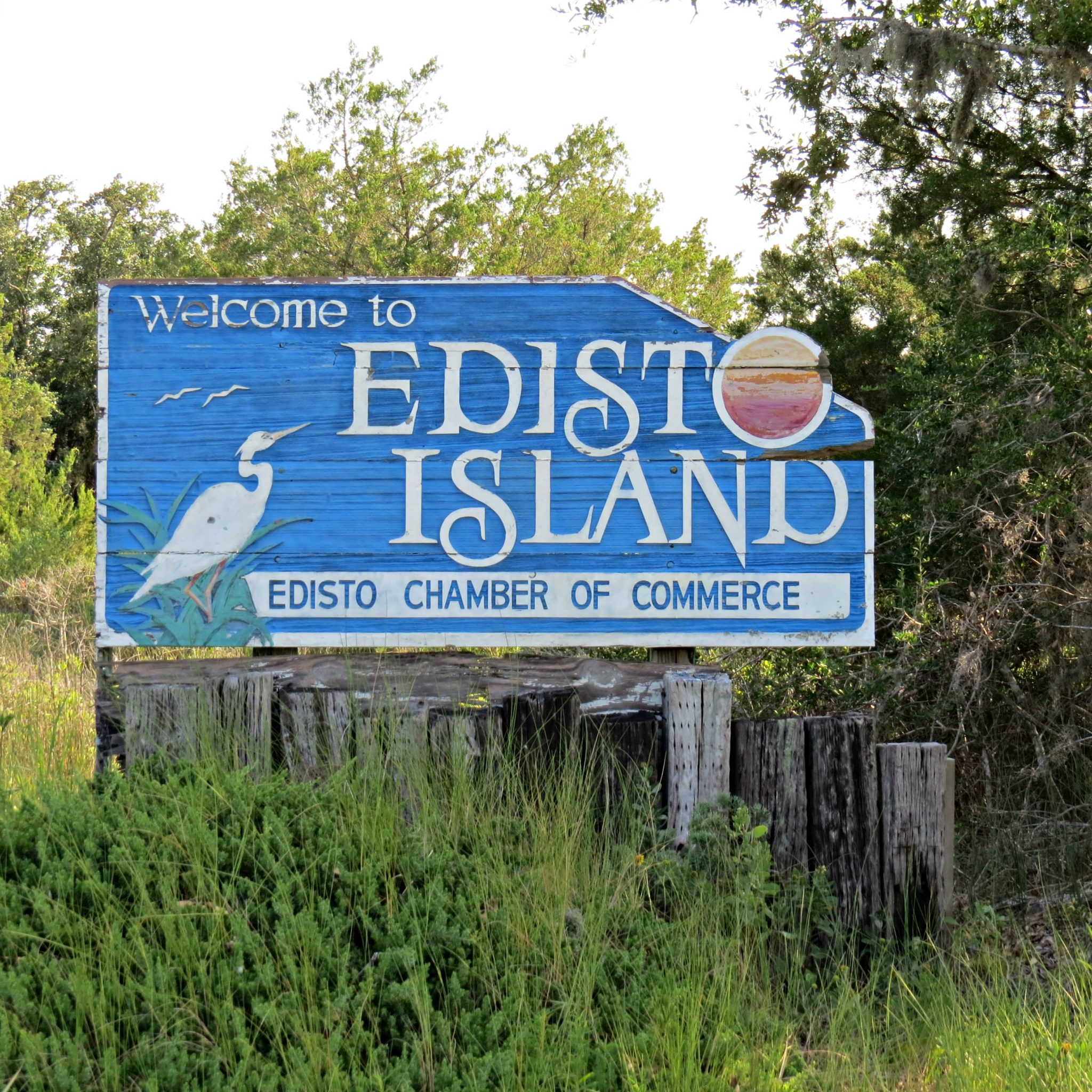 things to do in edisto written reality