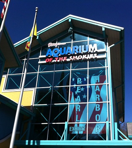 gatlinburg tennessee aquarium