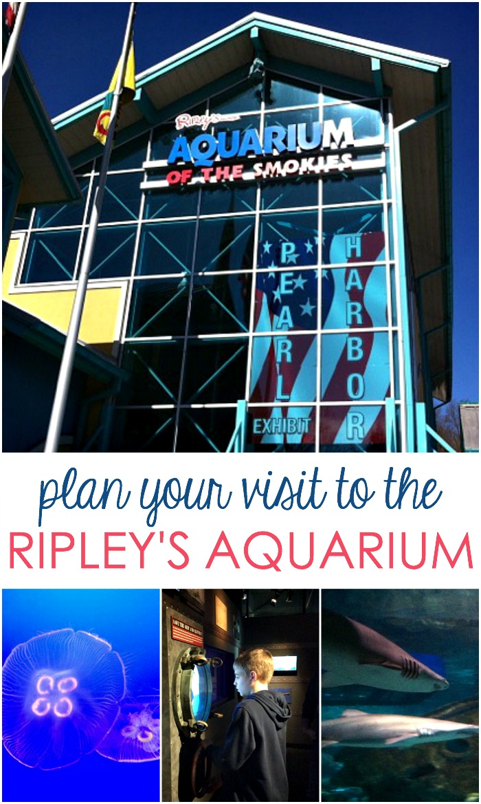 Gatlinburg TN Aquarium
